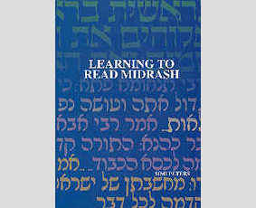 Learning to Read Midrash by Simi Peters