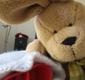 Plush Bunny Care