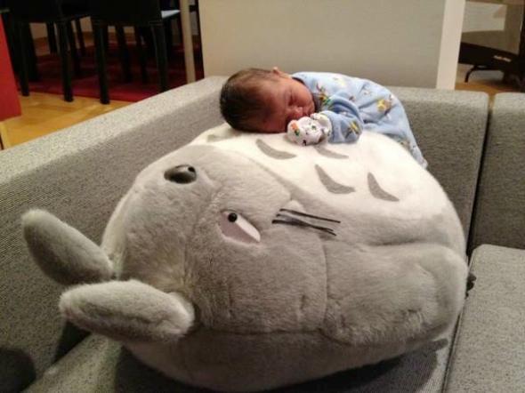 Plüsch-Totoro