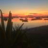 Cala Savina: Café del Lago