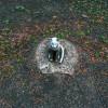 Assistens Kirkegård: Der steinerne Gast