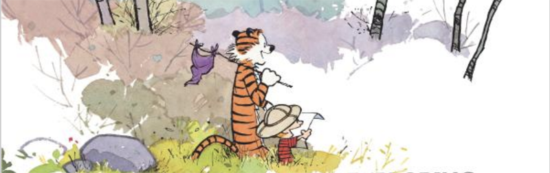 Calvin and Hobbes: Exploration